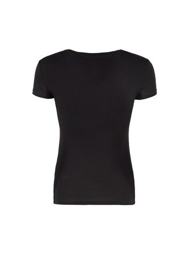Armani Exchange Armani Exchange Bisiklet Yaka Kısa Kol Yazı Baskılı Kadın T Shirt Siyah